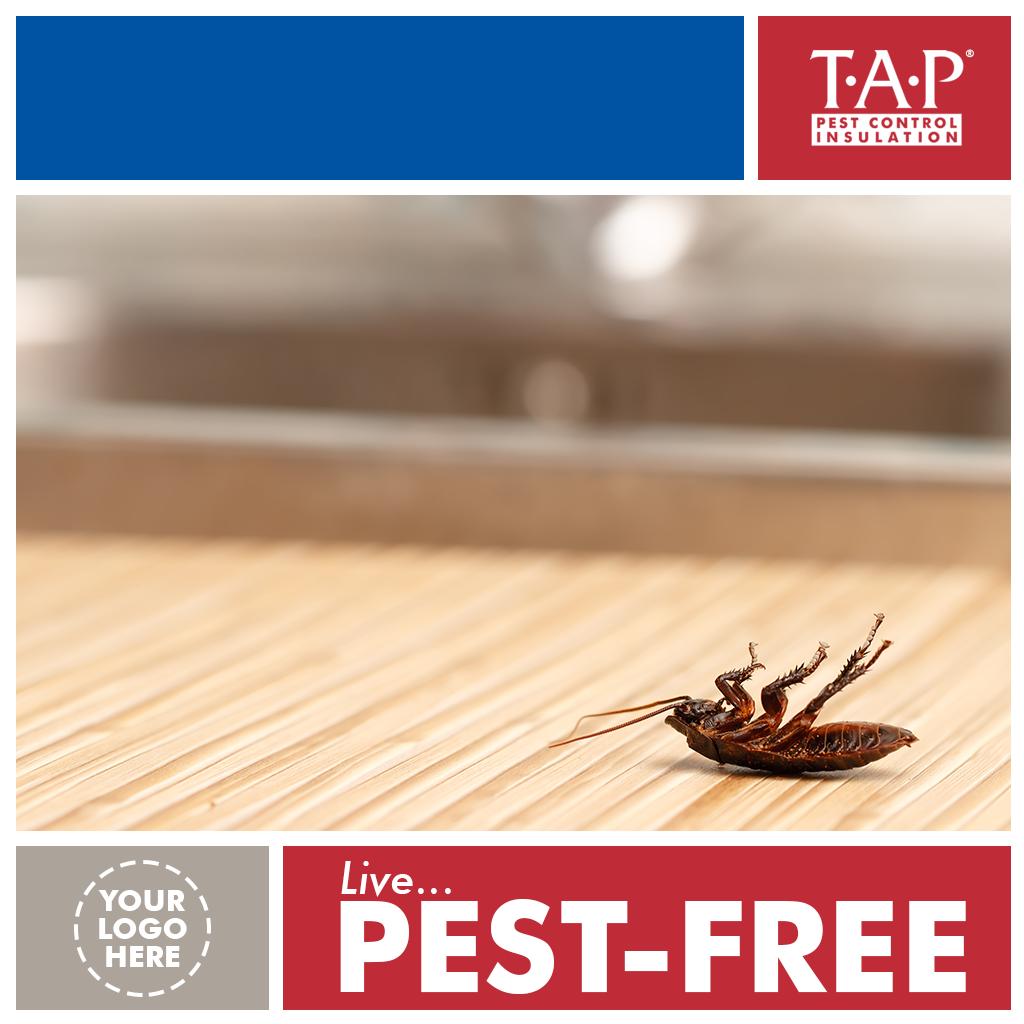 Social Media - Live Pest Free v2