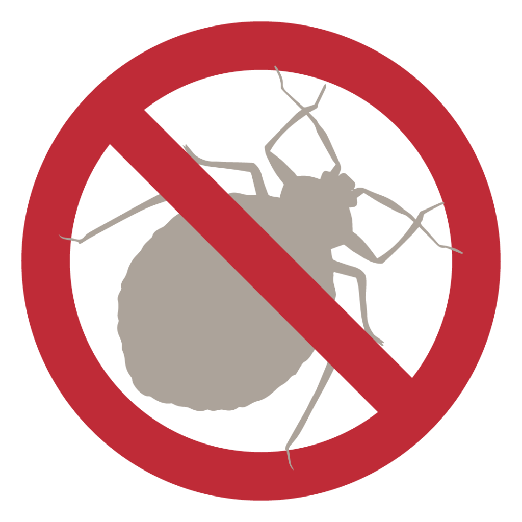 Bat Bugs