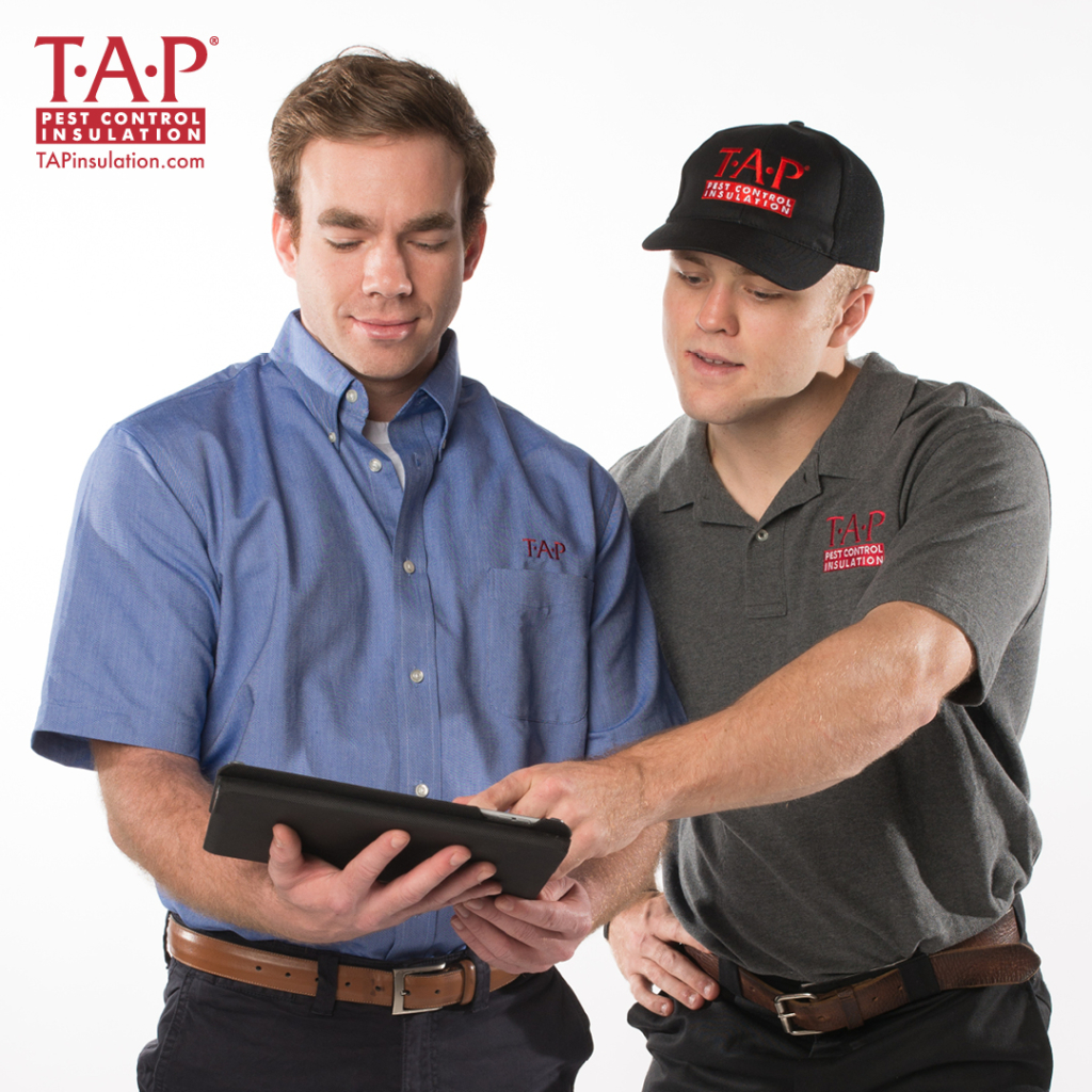 Starting Your TAP Business with Training