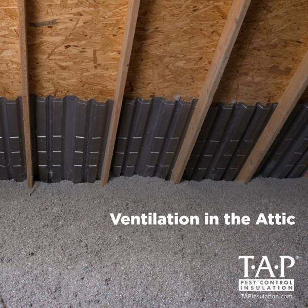 Ventilation in the Attic