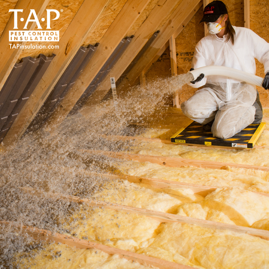 Basic Installation Tips for TAP® Pest Control Insulation